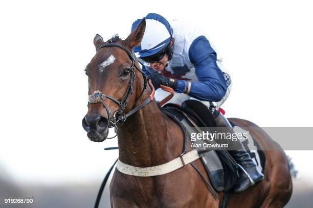 Alan Johns riding Point Of Principle clear the last to win The Ascot Schools Art Competition Novices' Hurdle Race at Ascot Racecourse on February 17...
