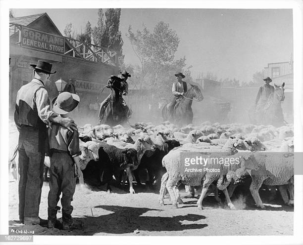 Alan Ladd with arm around Brandon De Wilde as they watch sheep being herded in a scene from the film 'Shane', 1953.