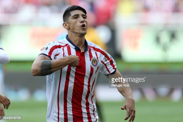 Alan Pulido of Chivas celebrates after scoring the opening during the 10th match between Chivas and Queretaro as part of the Torneo Apertura 2018...