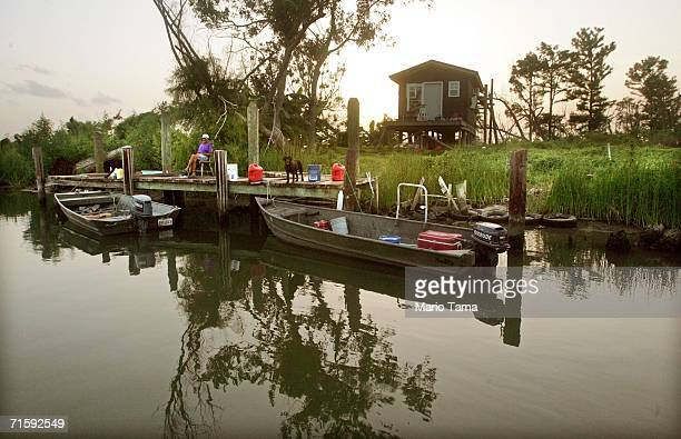 Alan Sessum sits with his dogs on the dock of his neighbor's camp house where he currently lives in the devastated Plaquemine's Parish August 3 2006...