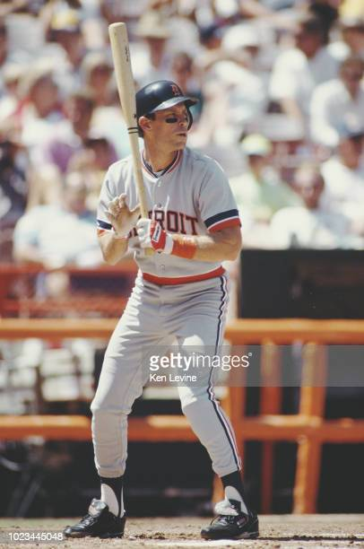 Alan Trammell Designated hitter and Shortstop for the Detroit Tigers at bat during the Major League Baseball American League West game against the...