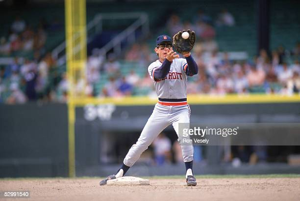 Alan Trammell of the Detroit Tigers fields during an MLB game at Comiskey Park in Chicago Illinois Alan Trammell played for the Detroit Tigers from...