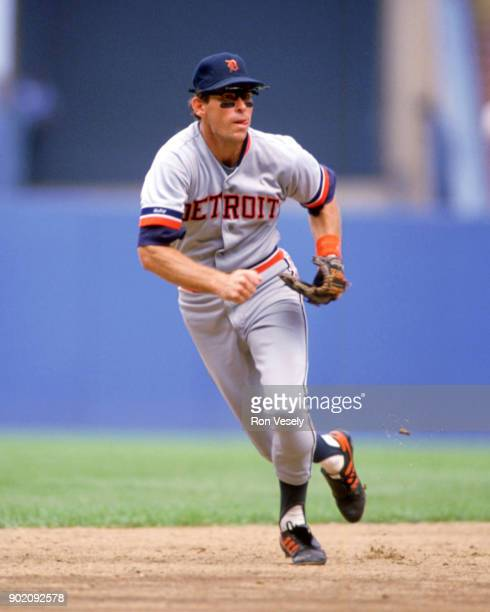 Alan Trammell of the Detroit Tigers fields during an MLB game versus the Cleveland Indians at Municipal Stadium in Cleveland Ohio during the 1989...