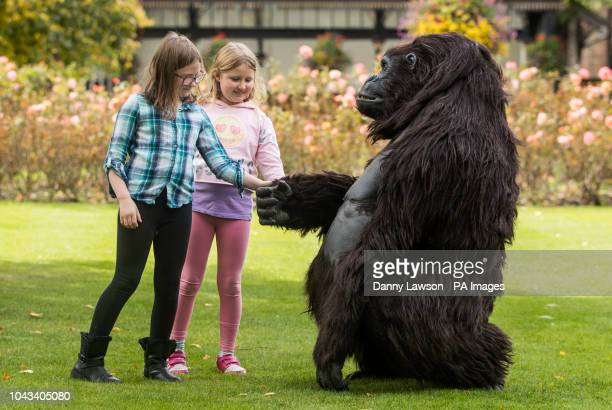Alanna Paszkowska and Ella Rose interact with a Tourism Uganda lifesize animatronic mountain gorilla during the Wildlife amp Safari Travel Show at...