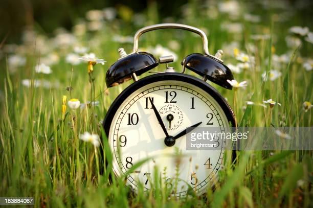Alarm clock in nature