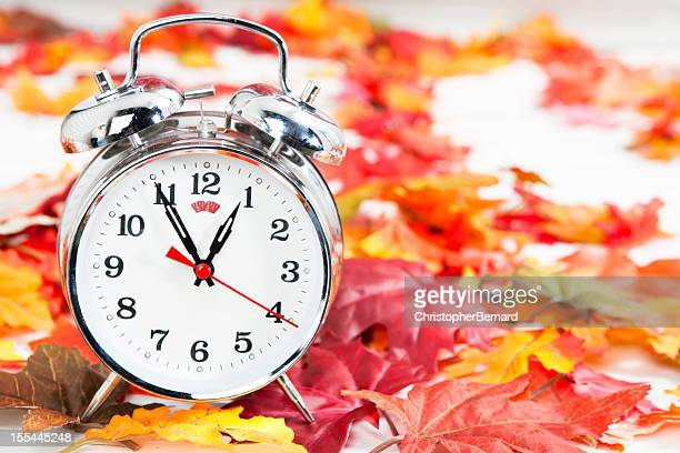 Alarm clock on autumn leaves