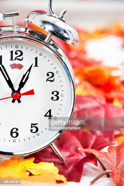Alarm clock on autumn leaves