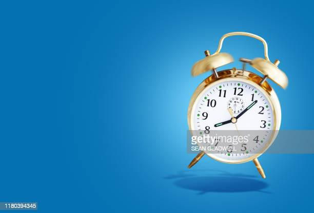 alarm clock ringing - animal behaviour stock pictures, royalty-free photos & images