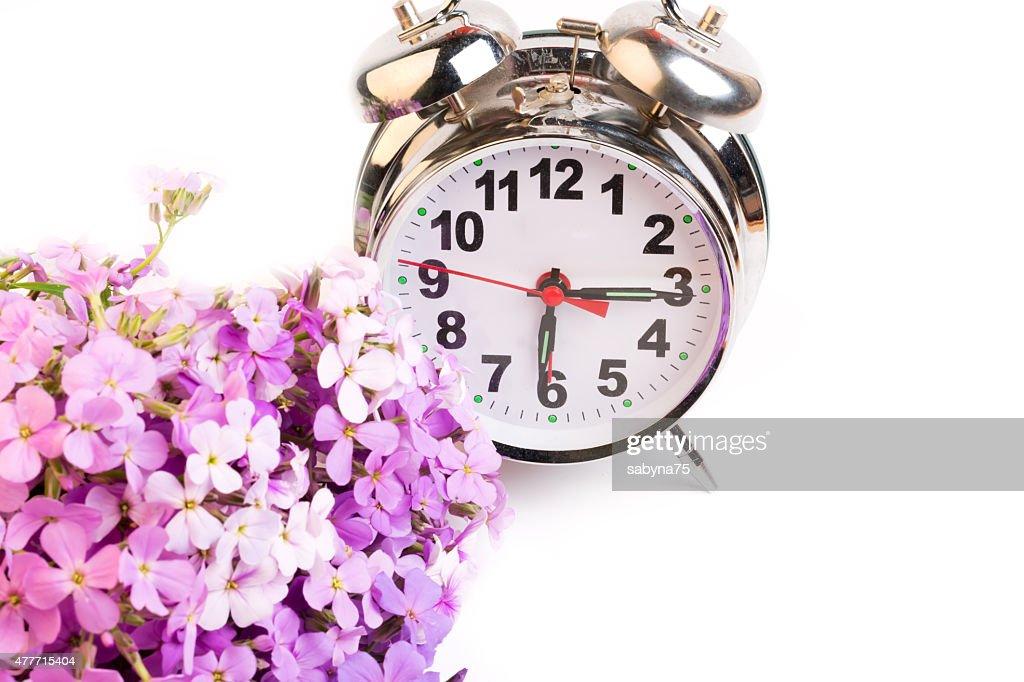 alarm clock violet flowers night morning selective soft focus stock