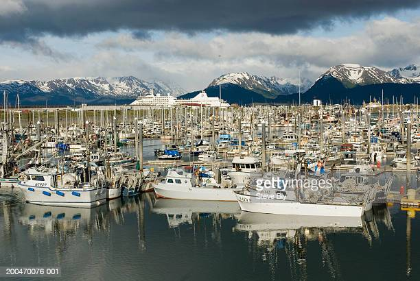 USA, Alaska, Kenai Peninsula, Homer, fishing boats in harbor