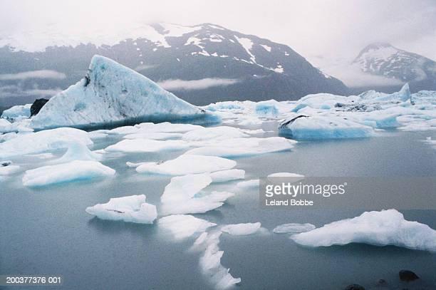 USA, Alaska, Kenai Peninsula, Portage Glacier