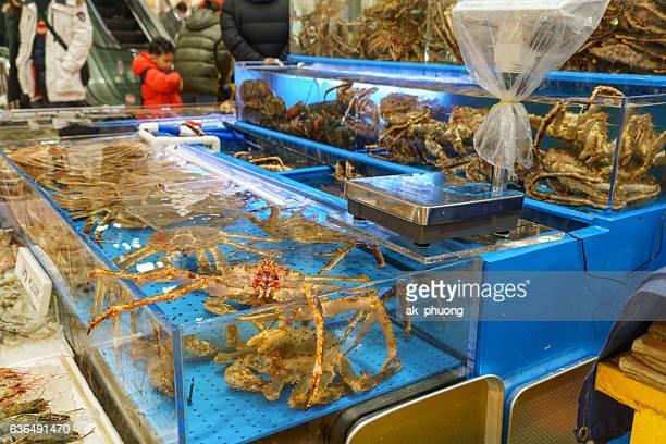 alaska king crab - alaskan king crab stock pictures, royalty-free photos & images