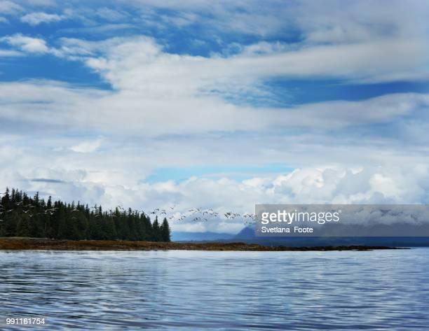 alaska landscape - svetlana stock photos and pictures