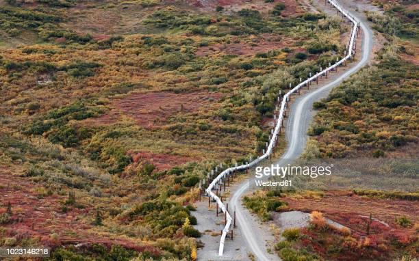 usa, alaska, oil pipeline - paisajes de alaska fotografías e imágenes de stock