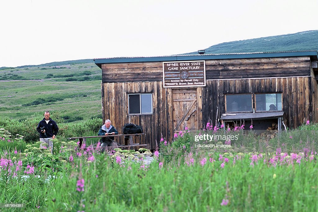 Alaska Peninsula, McNeil River State Game Sanctuary, Grizzly Bear Viewing,  Building For Food