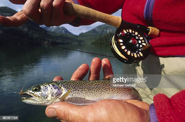 A fly fisherman shows off a freshly caught rainbow trout.