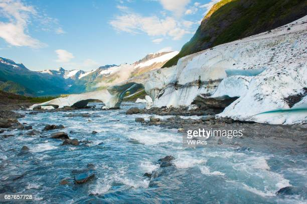alaska Portage Valley Byron Glacier