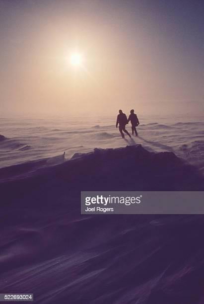 Alaska, Prudhoe Bay, North Slope, Arctic wildlife researchers
