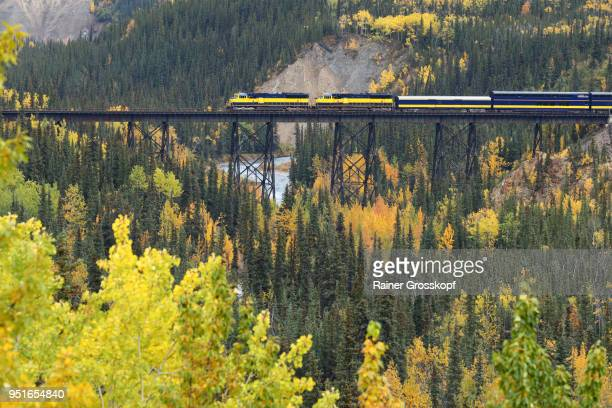Alaska Railroad in autumn landscape