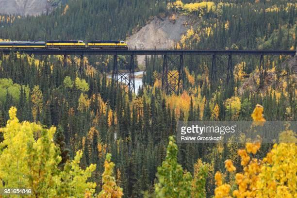 alaska railroad in autumn landscape - rainer grosskopf stock-fotos und bilder