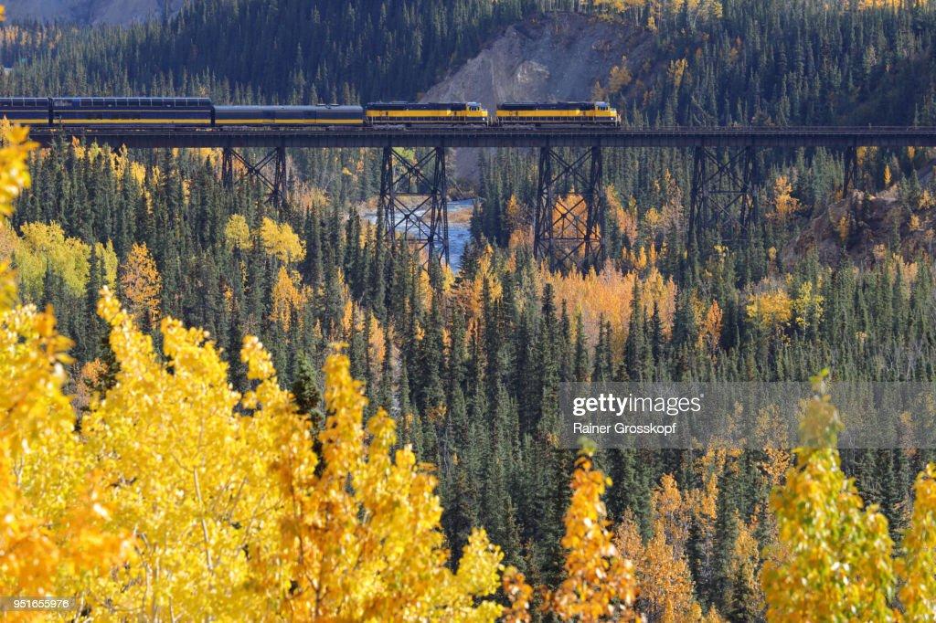 Alaska Railroad in autumn landscape : Stock-Foto