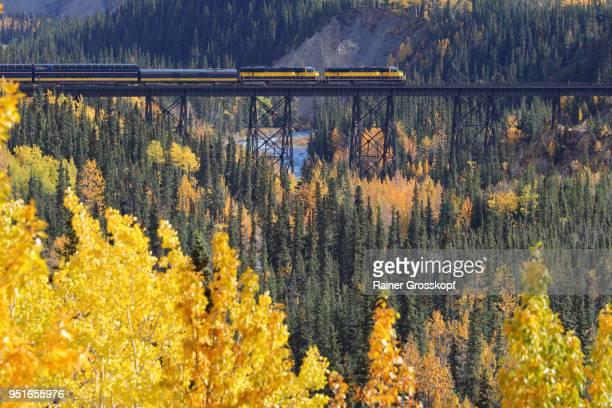 alaska railroad in autumn landscape - rainer grosskopf stock pictures, royalty-free photos & images