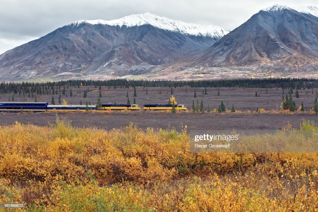 Alaska Railroad in autumn landscape : Stock-Foto