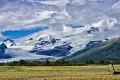 bald eagle alaska wilderness with glacier