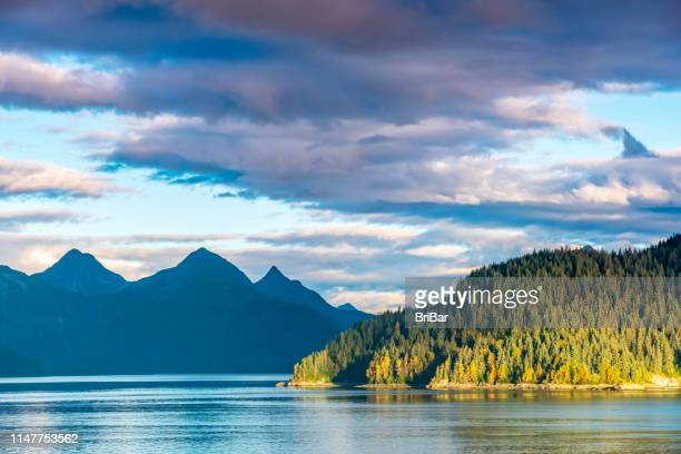 alaskan fjord with sunlit forested headland - north america stock pictures, royalty-free photos & images