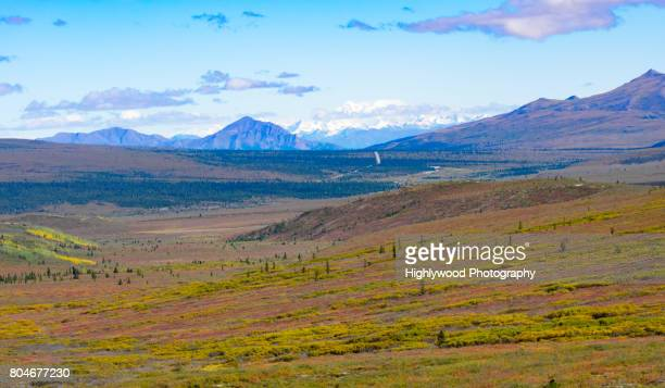 alaskan spring - highlywood stock photos and pictures