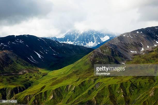 Alaskan tundra Denali National Park Alaska