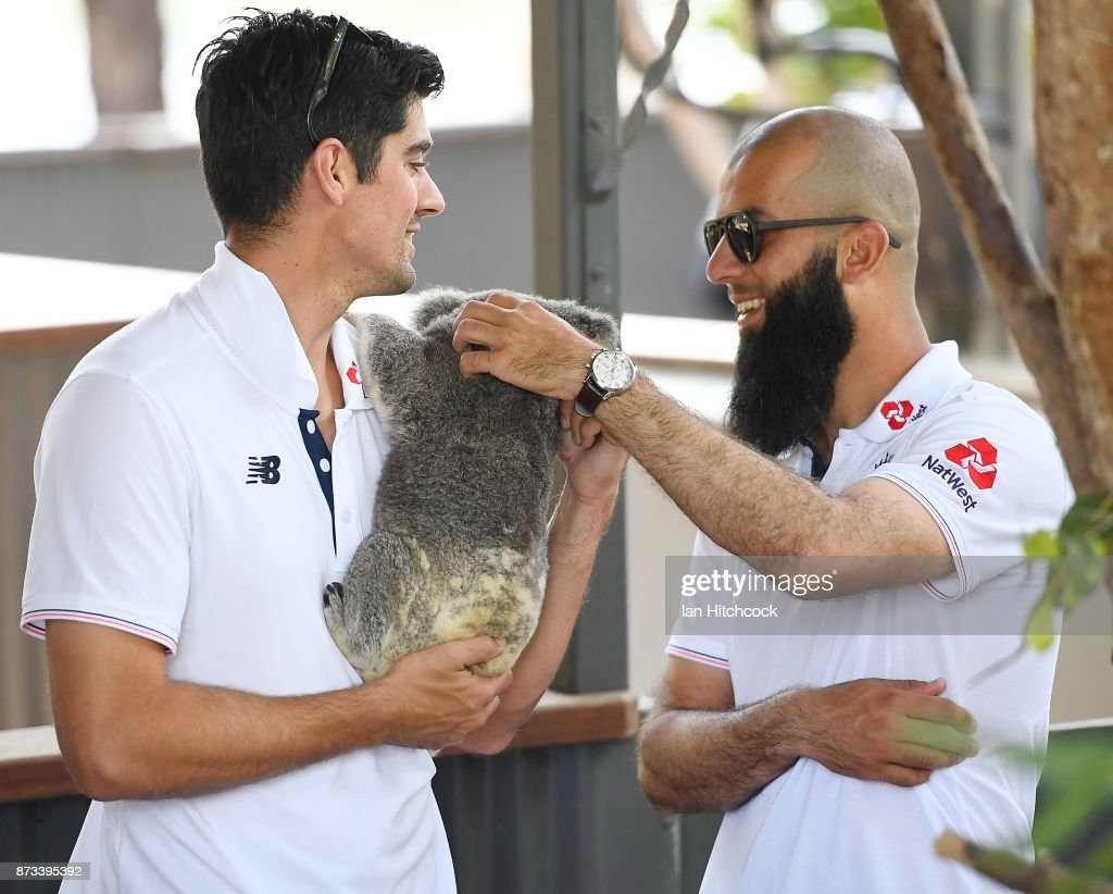 Alastair Cook of England holds a koala as Moeen Ali pats it during the England media opportunity on November 13, 2017 at Billabong Sanctuary in Townsville, Australia.