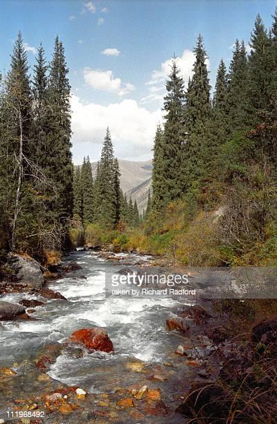 Alatau mountain river, Kazakhstan
