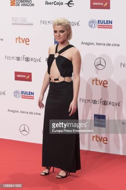 Alba Reche attends the red carpet during 'Jose Maria Forque Awards' 2019 at Palacio de Congresos on January 12 2019 in Zaragoza Spain
