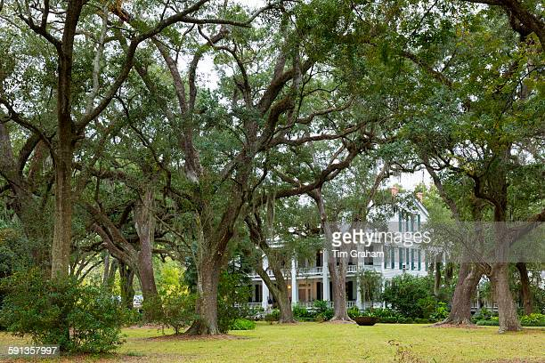 Albania Plantation mansion house with Southern Live Oak trees Quercus virginiana on Bayou Teche by Jeanerette Louisiana USA