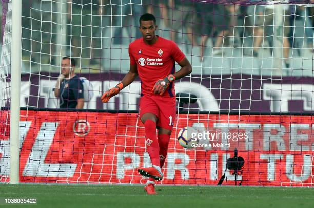 AlbanMarc Lafont of ACF Fiorentina in action during the Serie A match between ACF Fiorentina and SPAL at Stadio Artemio Franchi on September 22 2018...