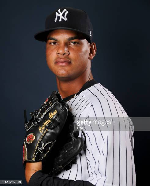 Albert Abreu of the New York Yankees poses for a portrait during the New York Yankees Photo Day on February 21 2019 at George M Steinbrenner Field in...
