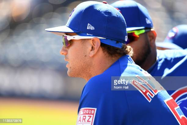 Albert Almora Jr of the Chicago Cubs looks on from the top step of the dugout during a spring training game against the Milwaukee Brewers at Maryvale...