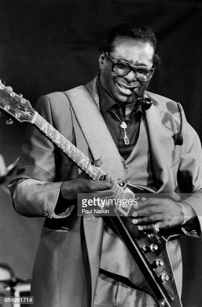 Albert King at the Petrillo Bandshell in Chicago Illinois June 6 1986
