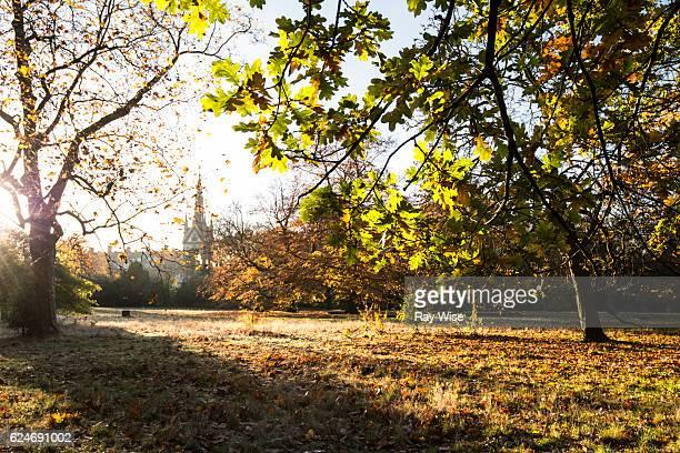 Albert Memorial from Kensington Gardens in autumn