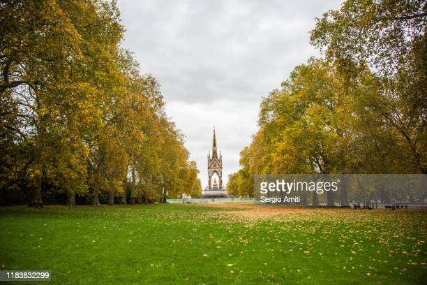 albert memorial in autumn - hyde park london stock pictures, royalty-free photos & images