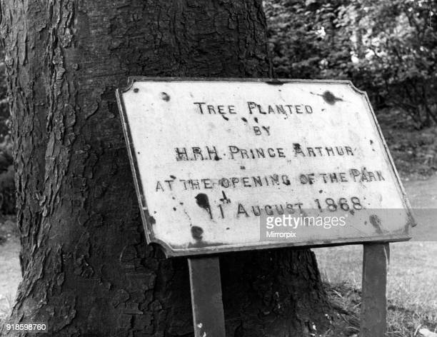Albert Park , Middlesbrough, 9th August 1968. Tree planted by HRH Prince Arthur at the opening of the park, 11th August 1868.