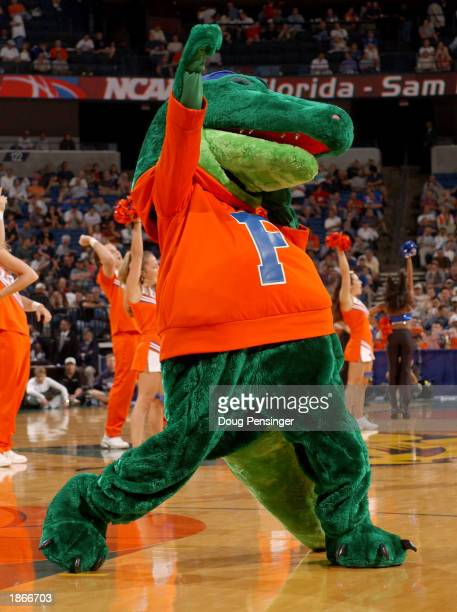 Albert the mascot for the University of Florida Gators cheers for his team against the Sam Houston State Bearkats as the Gators defeated the Bearkats...