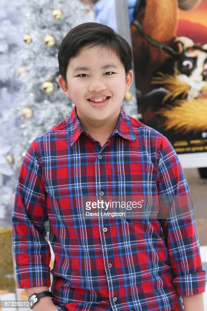 Albert Tsai arrives at the Premiere of Columbia Pictures' 'The Star' at the Regency Village Theatre on November 12 2017 in Westwood California