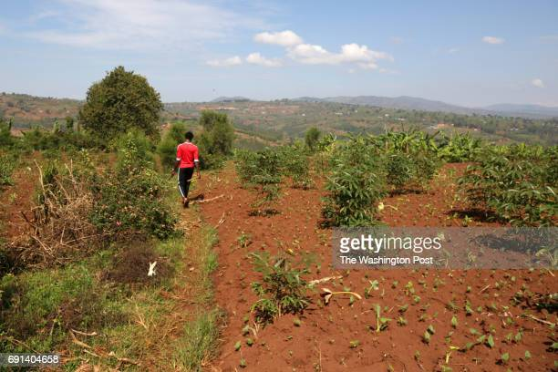 Albert who declined to use his last name because of the stigma surrounding his situation walks from his mother's house to his family's old land where...