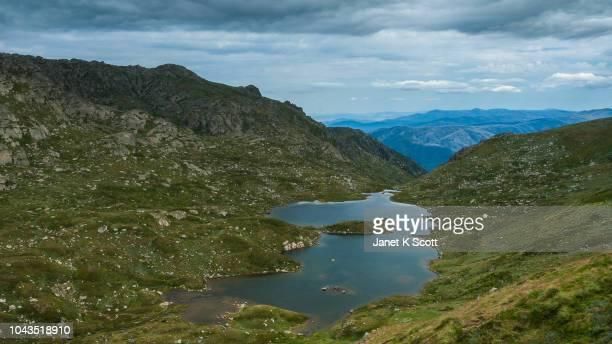 albina lake, mt kosciuszko - janet scott stock pictures, royalty-free photos & images