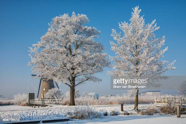 Alblasserdam,Netherlands