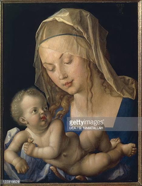 Albrecht Dürer Madonna and Child oil on panel 49x37 cm