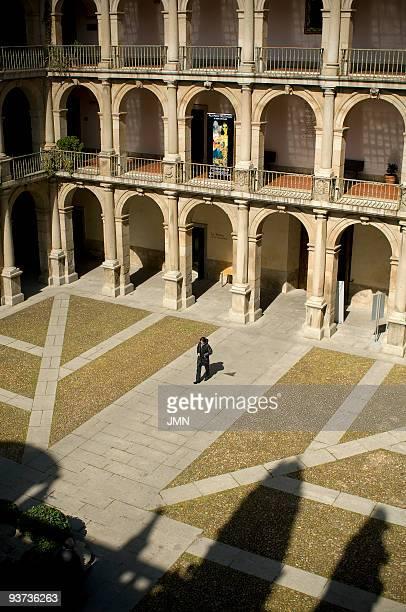 alcala de henares, university - alcala de henares stock pictures, royalty-free photos & images