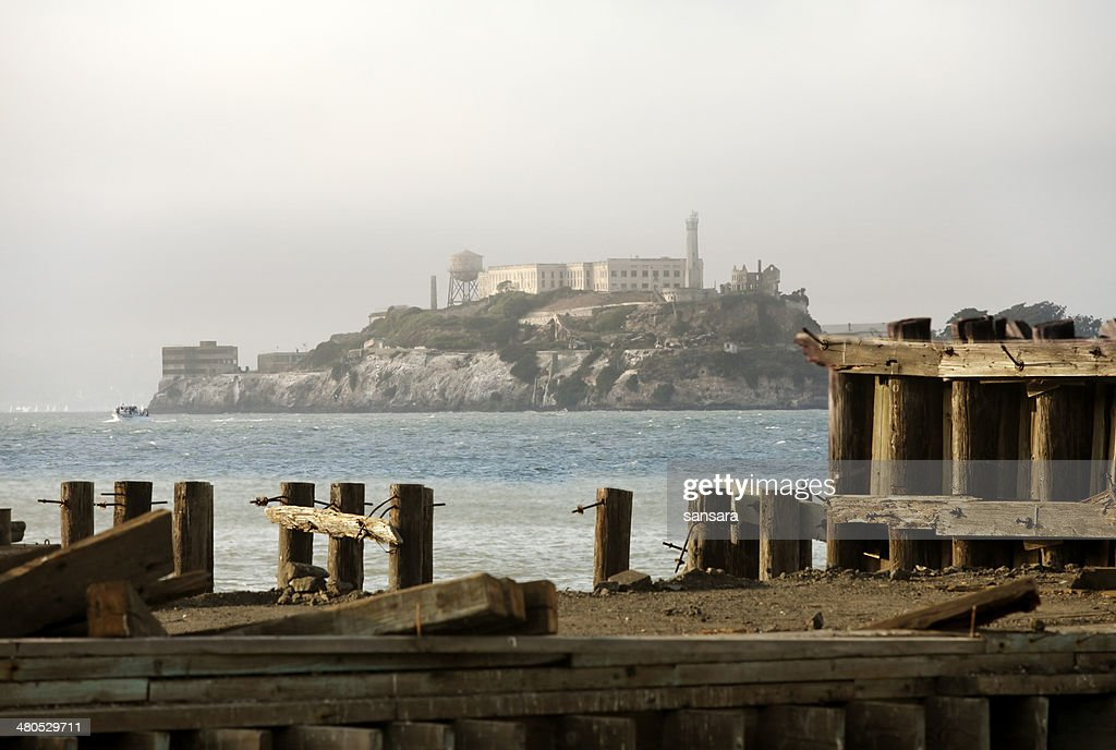 Alcatraz : Stock Photo